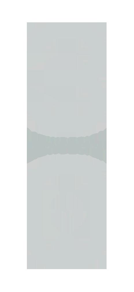 Liew Design, Inc Logo